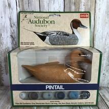 Vintage National Audubon Society Pintail Duck Paint Kit Faux Wood Craft ... - £23.14 GBP