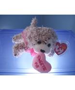 Snookums TY Beanie Baby MWMT 2006 - $4.99