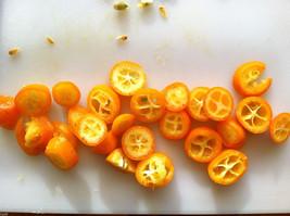 """5 Kumquat """"Meiwa"""" Seeds-1180A - $3.98"""