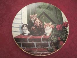 Sun Worshippers Collector Plate Lowell Davis Schmid Rare Friends Of Mine Cats - $39.20