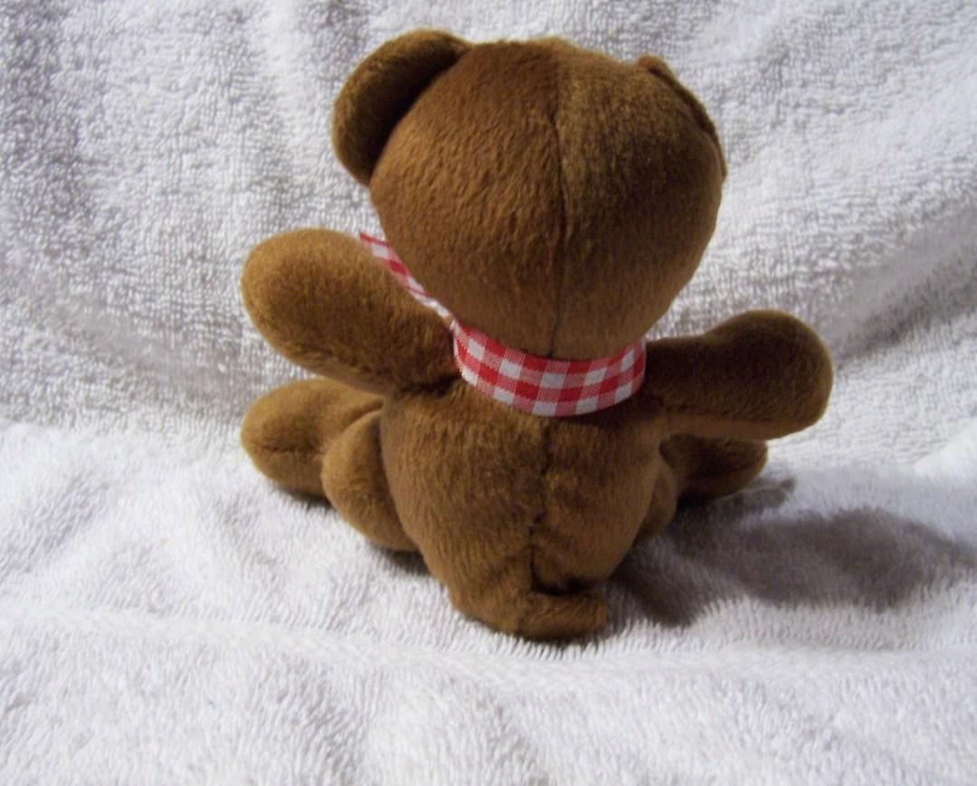 Smiling Brown Bear Sitting