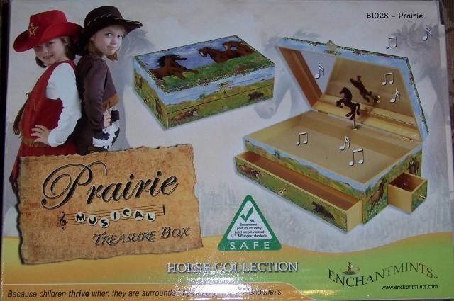 Prairie muiscal treasure box  640x425