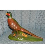 Ring Neck Cock Pheasant Large 17 inch Handpaint... - $15.00