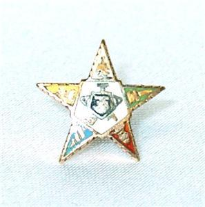 Vintage Tiny 10K Gold Enameled OES Eastern Star Pin