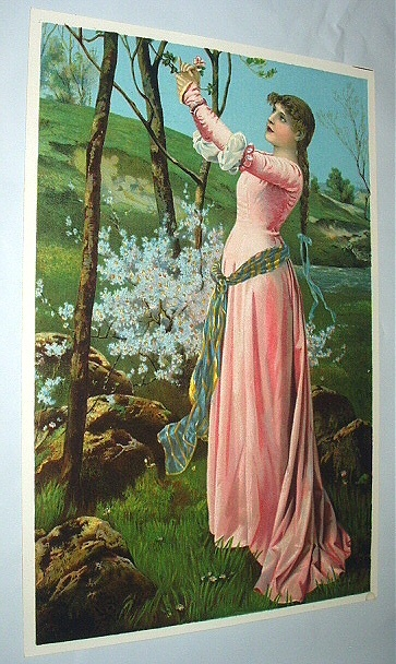 Victorian Lady in Pink Gown Gathering Flowers Antique Chromo