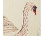 Swan2 thumb155 crop