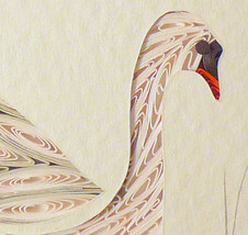 Swan2 thumb200