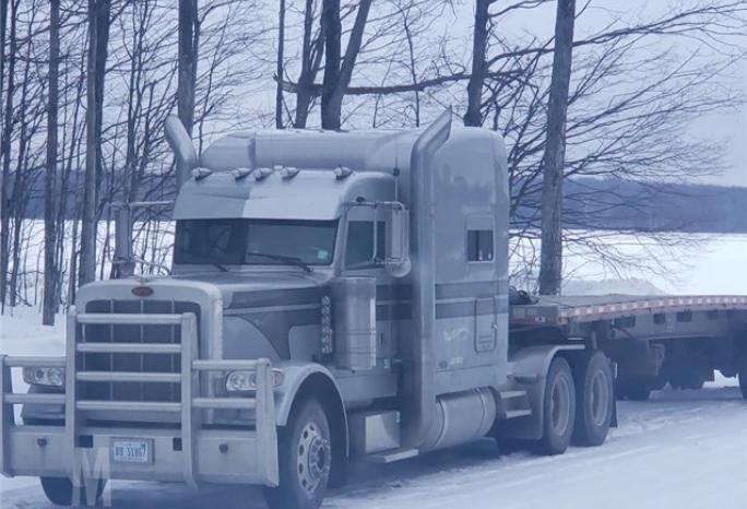 2011 PETERBILT 389 For Sale In Elmira, Michigan 49730