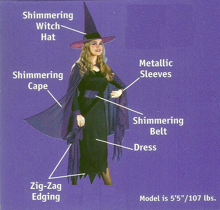 SHIMMERING WITCH ADULT COSTUME SZ 4-14