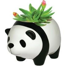 Panda Bear - Plant Pot - $19.00