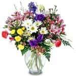 Flower Petals Shea Body Butter Cream 8oz BERRYSWEETSTUFF.COM