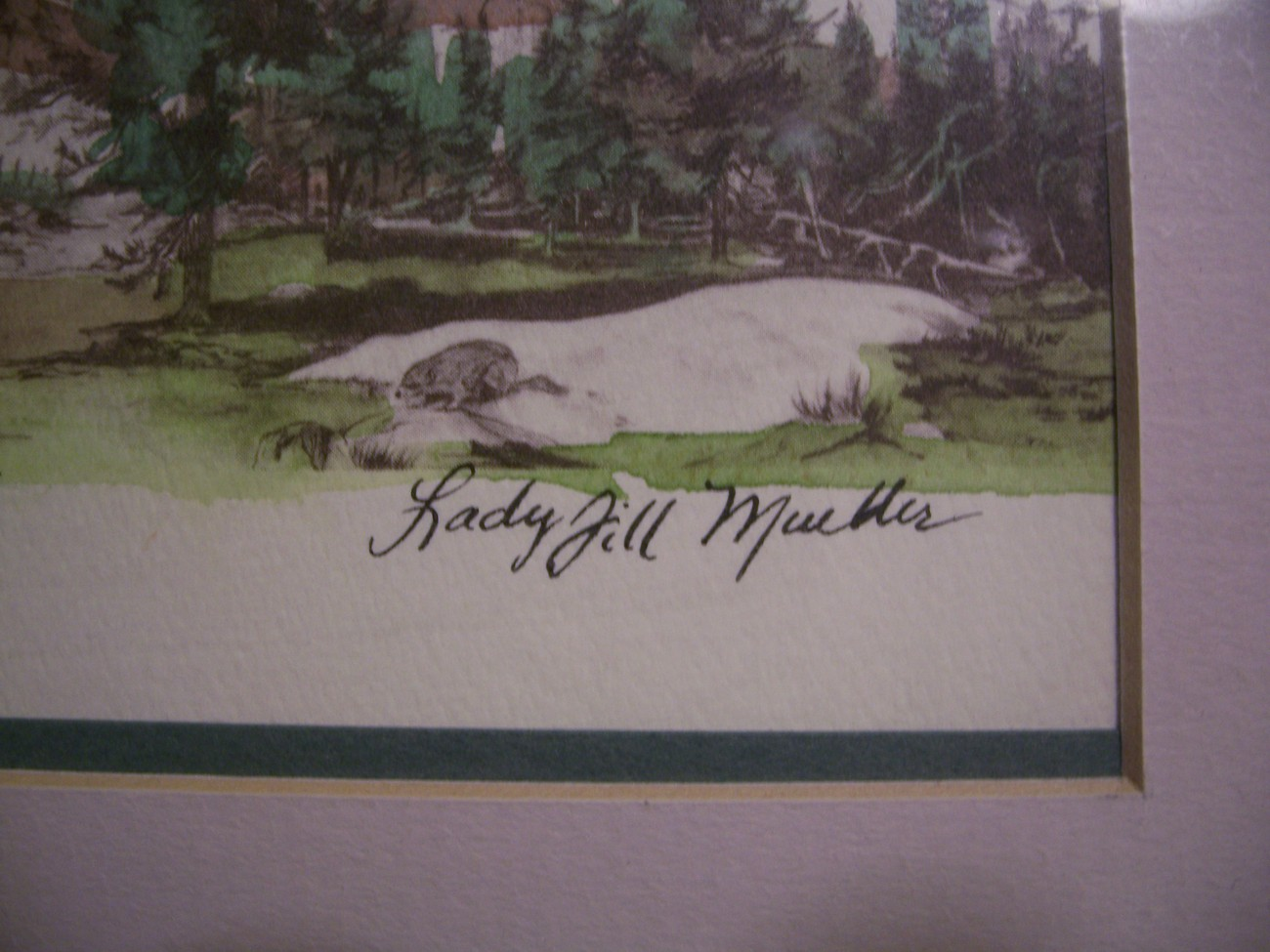 Framed Art Lady Jill Mueller Along The Pacific Crest Trail