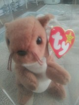 Nuts the Squirrel Ty Beanie Baby Retired with errors - $1,584.00