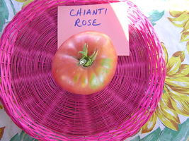 Chianti Rose Tomato -  one of the best of the Brandywine crosses - $4.05