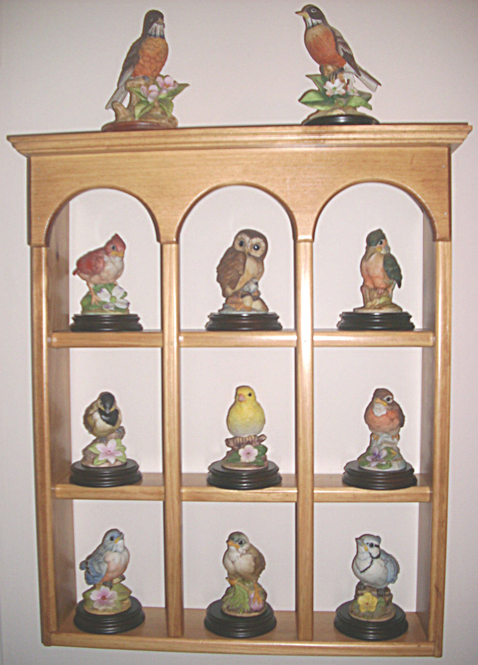 Curio Shelf - Large Shelf - Wall Decor