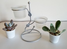 Metal Holder with Two Live Succulents, Silver-color Plant Stand with Glass Pots - $19.99