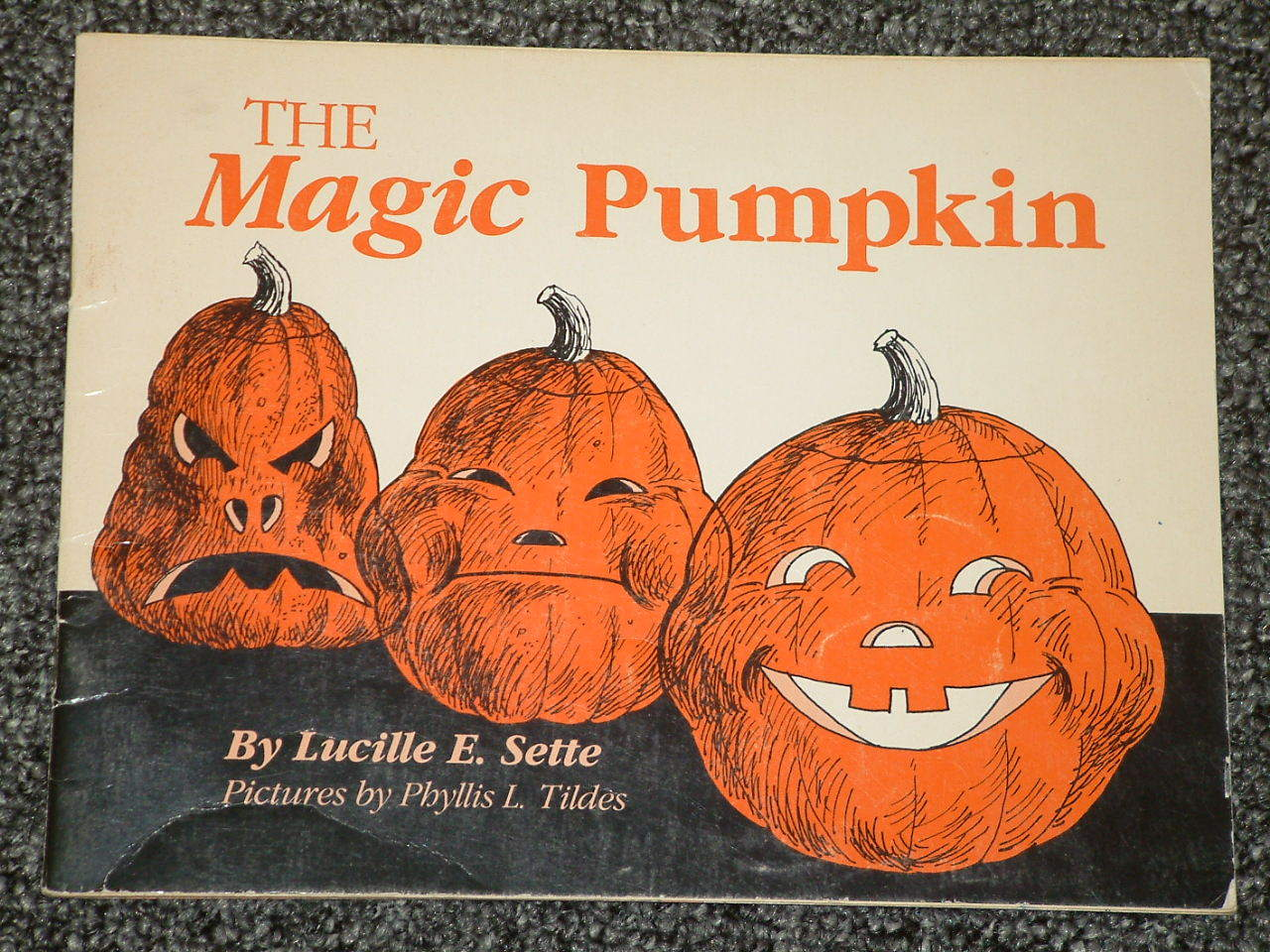 The Magic Pumpkin by Lucille E. Sette