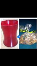 "Red Glass Vase 8"" X 6"" With bag of citrus potpourri - $48.99"