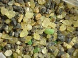Forest Resins Pure Natural Resin Incense 1oz - $4.00