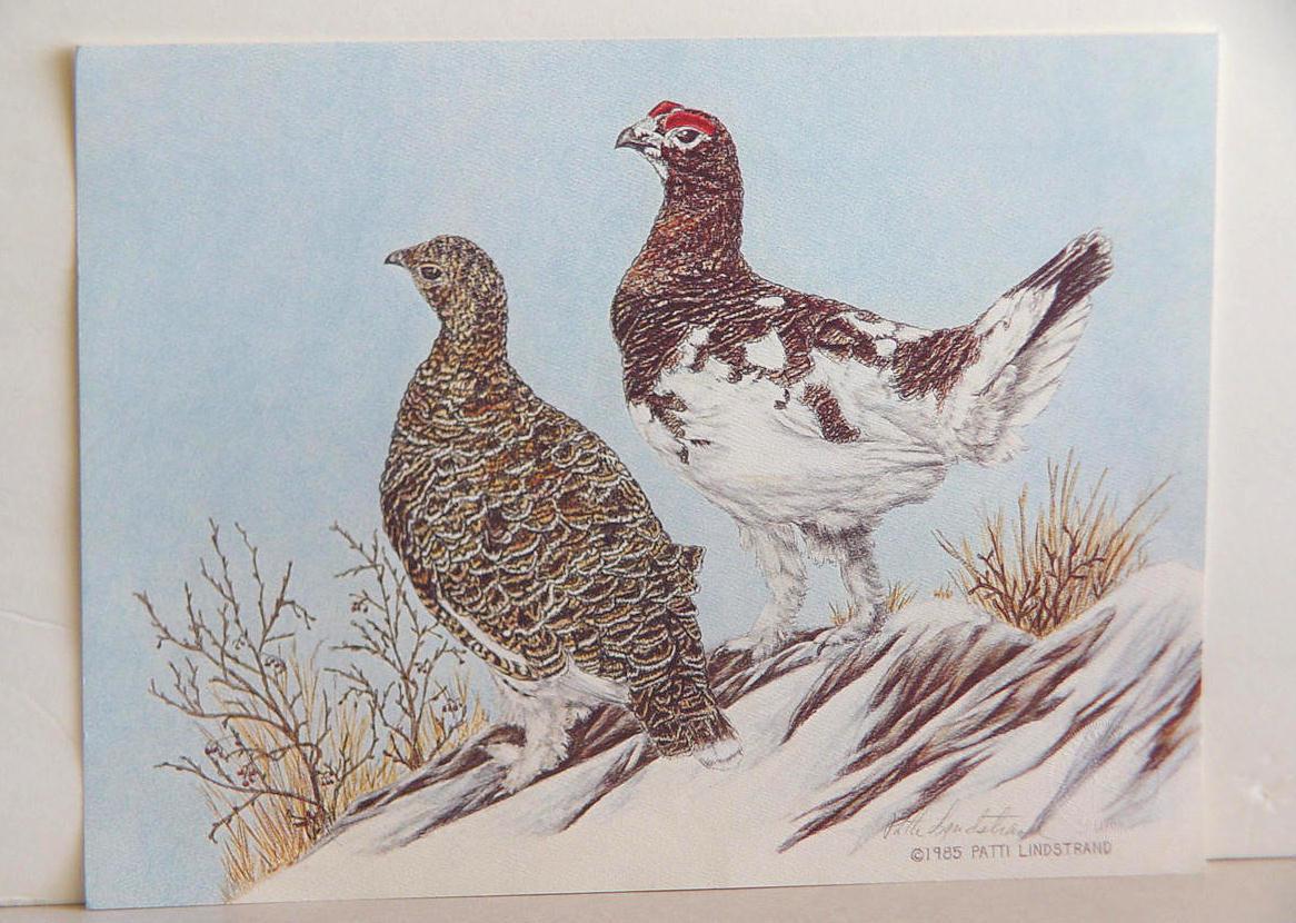 Patti Lindstrand Signed Ltd Ed Alaskan Wildlife Framed Print REDUCED PRICE