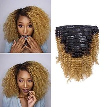 Afro Kinky Clip Ins Human Curly Hair Clip In Extensions 3C 4A 4B Natural Afro Ki
