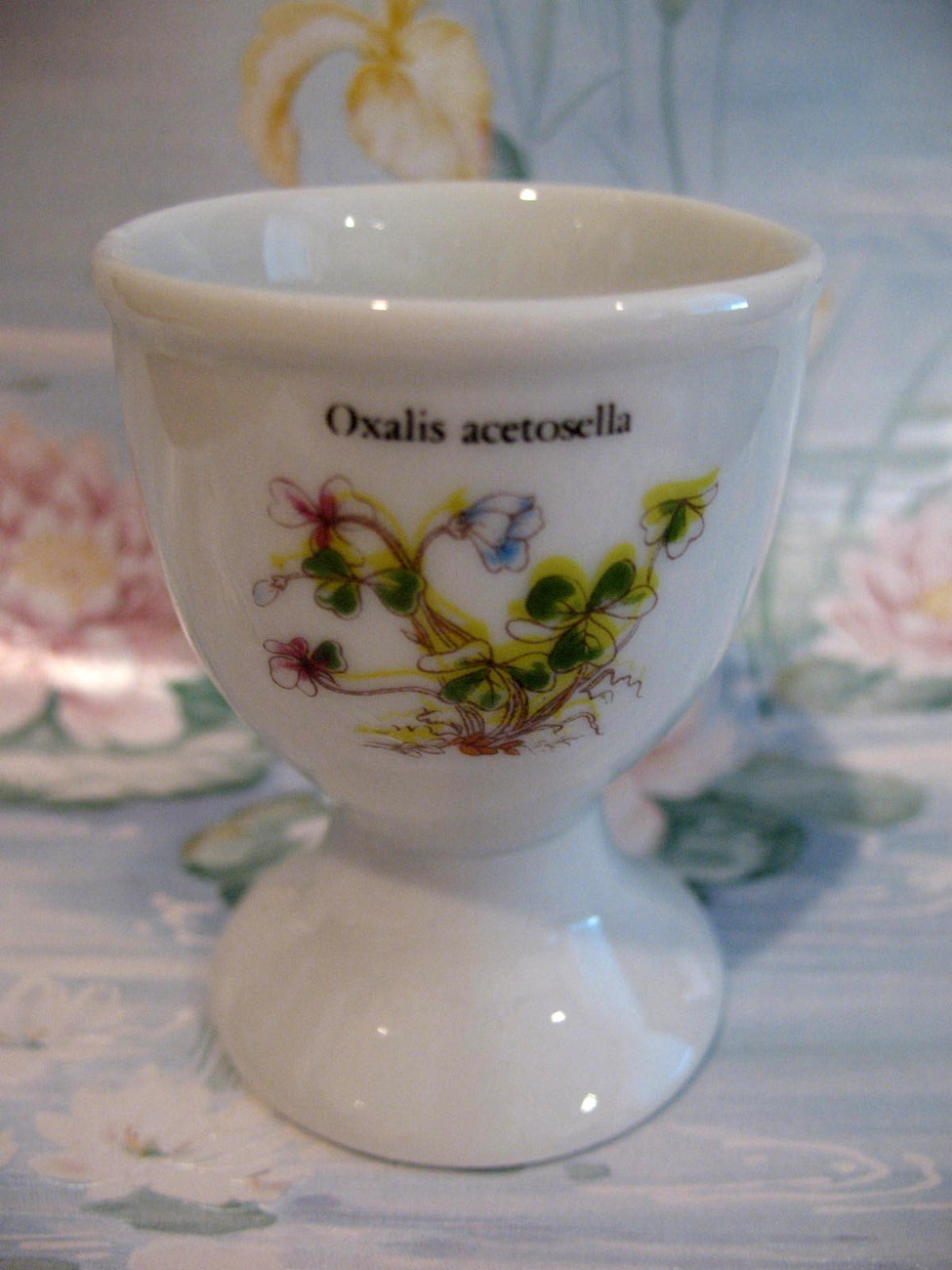 Oxalis Acetosella Wood Sorrel Flowers Egg Cup Vintage Collectible Collector