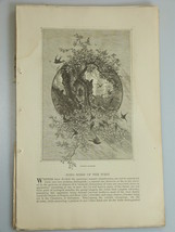 1878 SONGBIRDS OF THE WESTERN UNITED STATES Ori... - $19.99