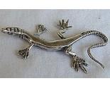Lizard a thumb155 crop