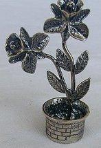 Plant b 2 thumb200