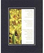 Consider the Lilies of the Field Per Matt 6:28-30. . . 8 X 10 Inches Bib... - $11.14