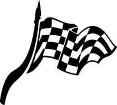 Cool Checkered Flag Decal  Car Truck Hood Window Cf#0 - $13.50