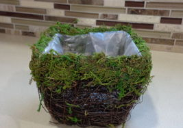 "4"" Square Wicker Basket With Moss Rim - $17.99"