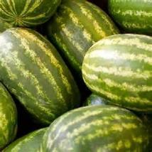 20 Seeds Kleckley Sweet Watermelon new seeds   - $8.50
