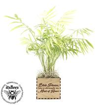 Funny Maid Of Honor Proposal Planter - Laser Cut & Engraved Wood - Weddi... - $40.00