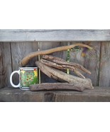 2DRIFTWOOD FOR AQUARIUM CRAFTS WALL ART TERRARIUMS FROM ROCKY MOUNTAINS ... - $17.95