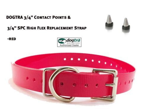 "DOGTRA 3/4"" Contact Points & 3/4"" SPC High Flex Replacement Strap - Red"