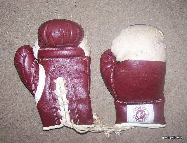 Sport physical fitness boxing gloves 001