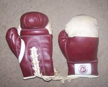 Sport physical fitness boxing gloves 001 thumb155 crop