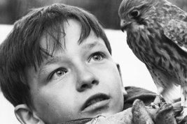 David Bradley in Kes with hawk 18x24 Poster - $23.99