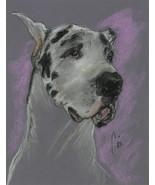 Great Dane Pastel Drawing Dog Art Solomon - Bodhi's Mystique - $199.00
