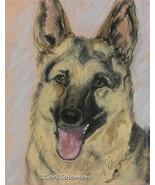 German Shepherd Dog Art Pastel Drawing Solomon - $90.00