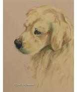 Golden Retriever Dog Art Pastel Drawing Solomon - $180.00
