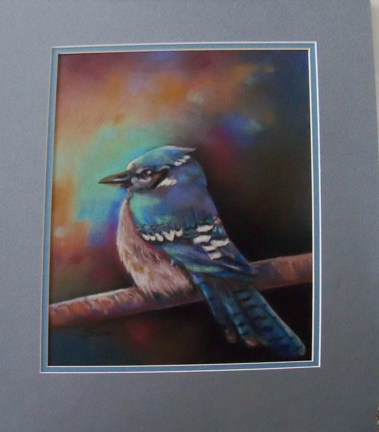 Original Art painting 11x16 framed pastel blue jay framed ready to hang