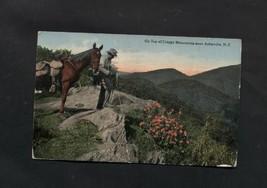 Vintage Postcard 1918 Craggy Mountain Asheville NC Horse Photography Camera - $5.99