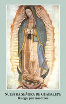 Oración a Nuestra Señora de Guadalupe: Spanish Prayercard (5 Packs of 100)