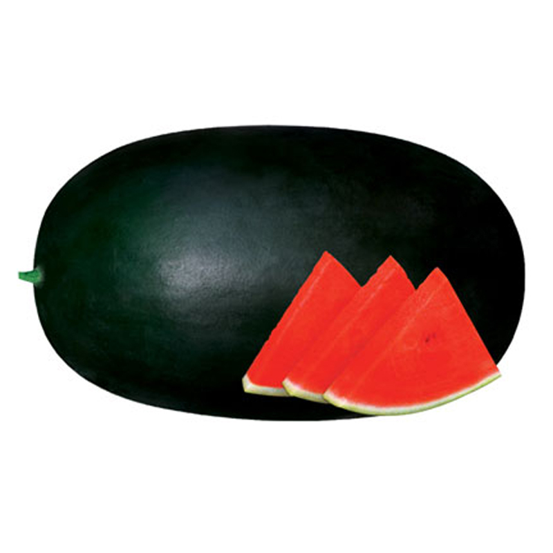 20pcs/lot . Giant Sweet Black Watermelon seed. home Gardening. huge delicious - $5.99