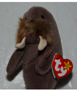Jolly Ty Beanie Baby Walrus - $4.00