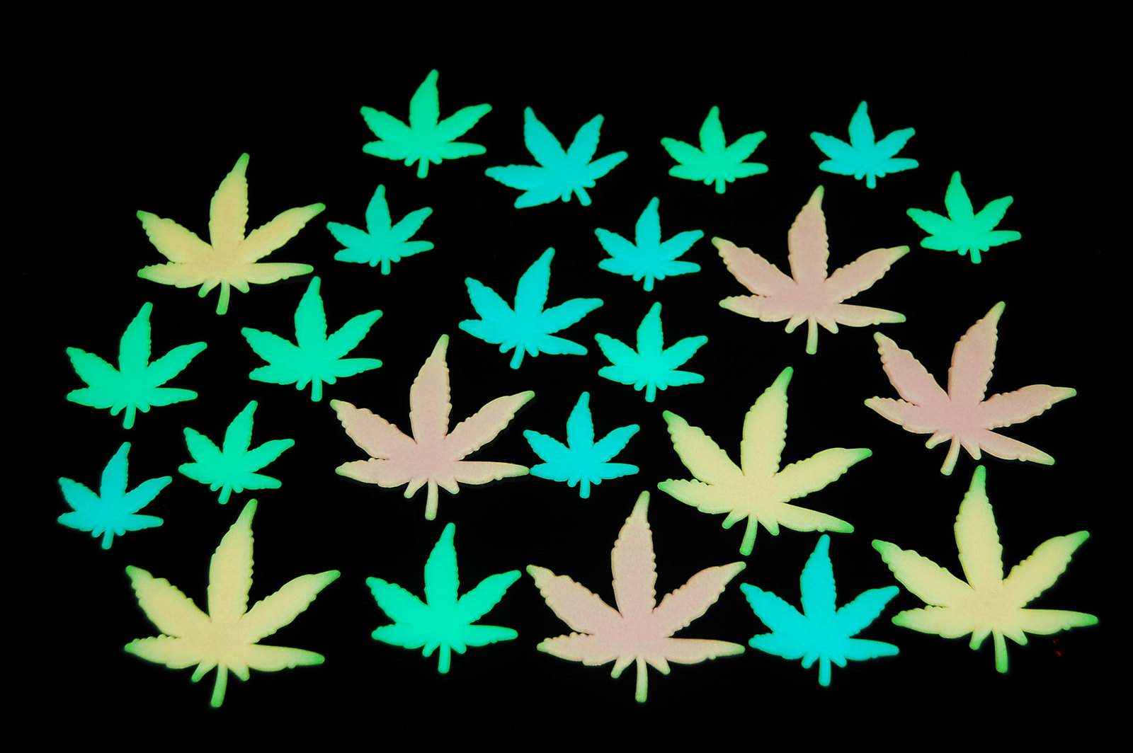 24pc glow in the dark weed pot leaf
