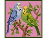Parakeets thumb155 crop