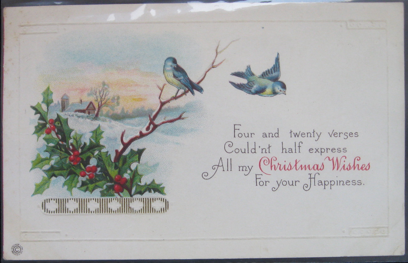 Primary image for Stecher Lithograph, Divided back, Embossed Postcard, Christmas Wish Bluebirds, 1
